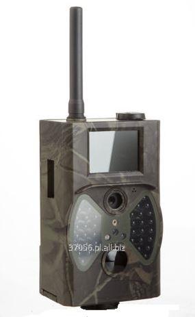 Kupić Fotopułapka, bezprzewodowa kamera GSM z czujnikiem ruchu