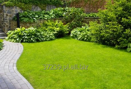 Kupić Wielofunkcyjny traktorek hybrydowy do prac w ogrodzie.
