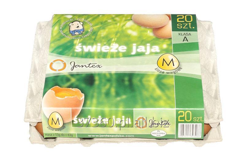 Kupić Świeże jaja klasy M, 20 świeżych jaj z chowu klatkowego.