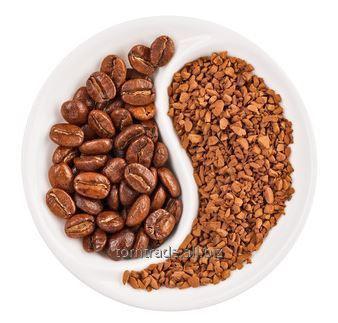 Kupić Kawa wysublimowana