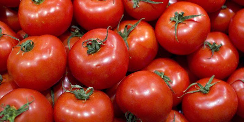 Kupić Pomidory