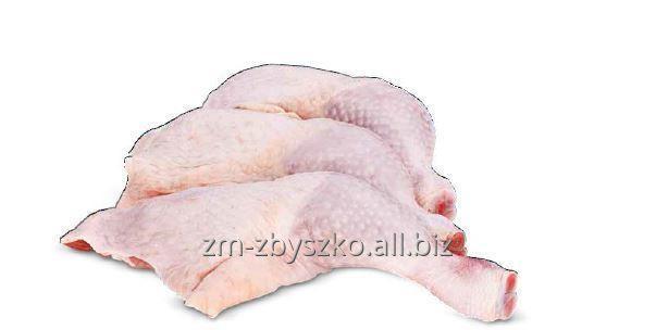 Kupić Udko z kurczaka