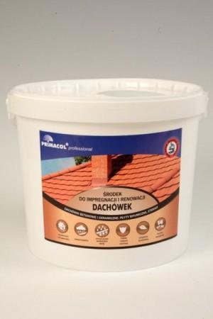 Kupić Środek do impregnacji i renowacji dachówek