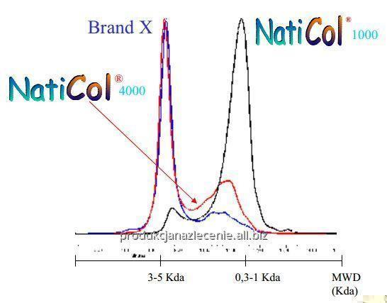 Kupić Francuski kolagen rybi Niticol komponent