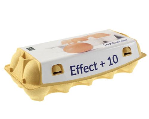Kupić Wytłaczanka na 10 jajek