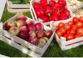 Kupić Drewniane skrzynie na owoce: jabłka, gruszki i inne, gotowe i na zamówienie