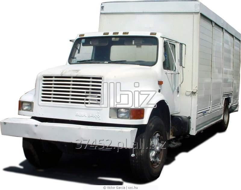 Kupić Ciężarówki