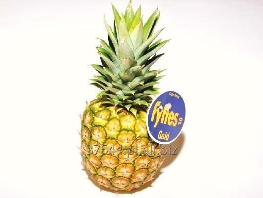 Kupić Ananas