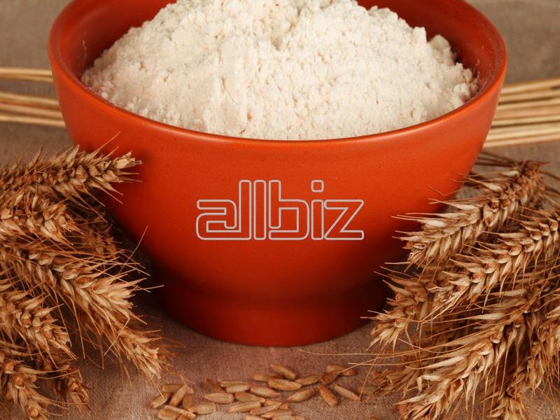 Kupić Mąka pszenna najlepszego gatunku, typ 450 i 550.