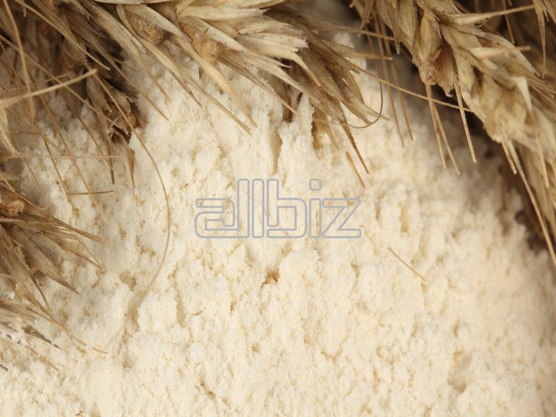 Kupić Mąki pszenne typu 450 i 550 w dobrej cenie.