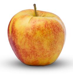 Kupić Jabłka wysokiej jakości