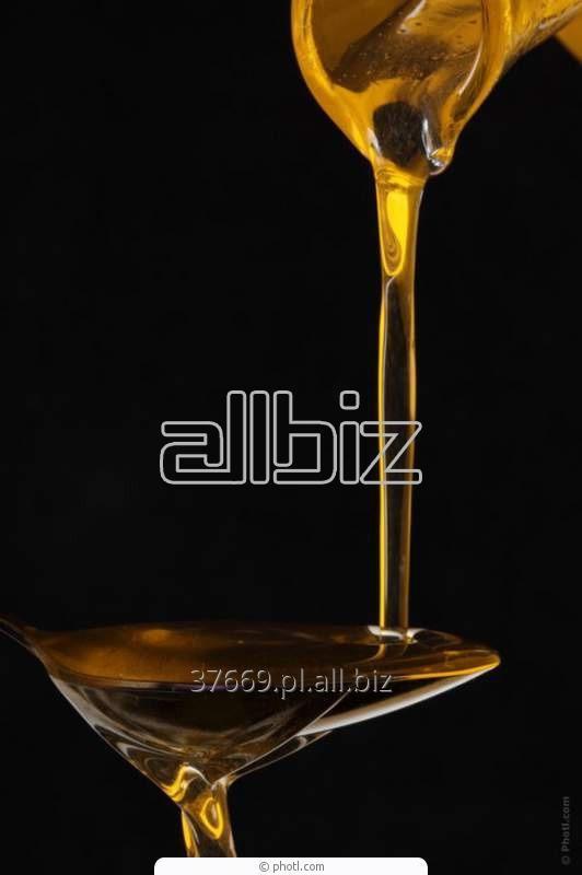 Kupić Olej rzepakowy.