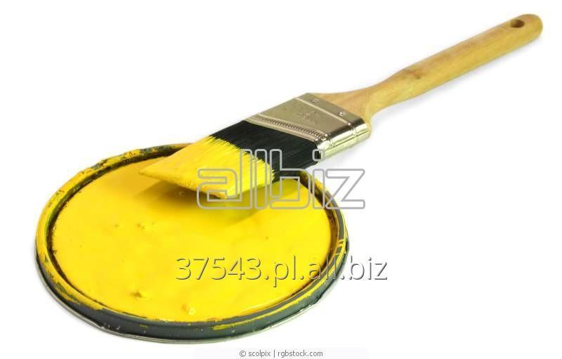 Kupić Farby olejowe
