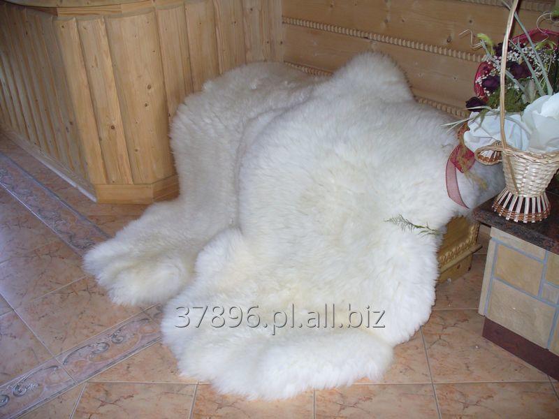 Kupić Skóra skóry owcze naturalne biale