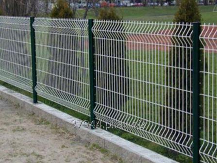 Kupić Panel ogrodzeniowy