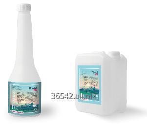Kupić Mineral Drink (500ml; 5l) - preparat zmniejszający ryzyko wystąpienia gorączki mlecznej