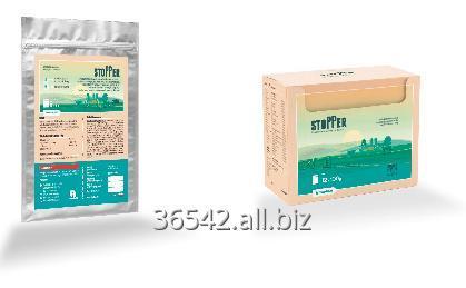 Buy Stopper (100 g, 1 kg) - drug against diarrhea