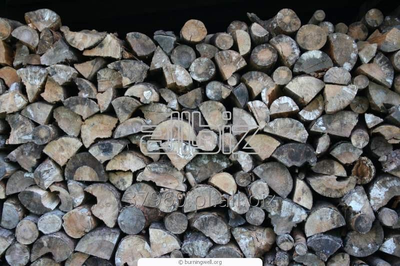 Kupić Drewno suche