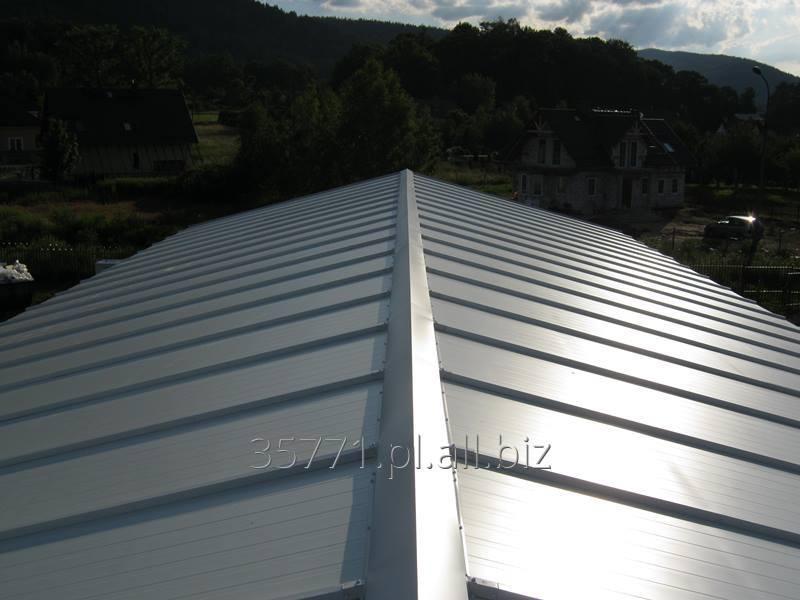 Kupić Płyta warstwowa dachowa z rdzeniem ze sztywnej pianki poliuretanowej PUR lub PIR