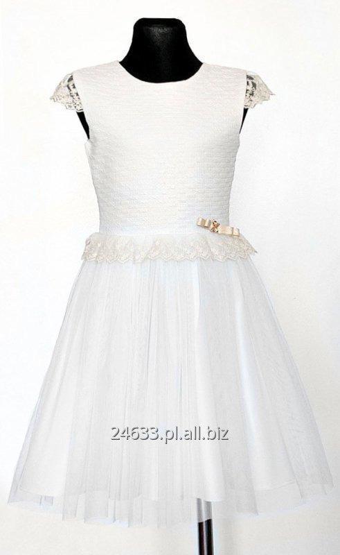 Kupić Suknia Wioletta