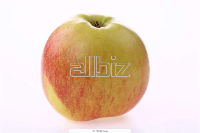 Kupić Jabłka naturalne