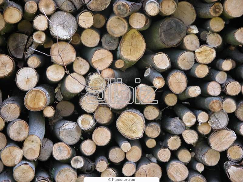 Kupić Drewno opałowe do kominków.