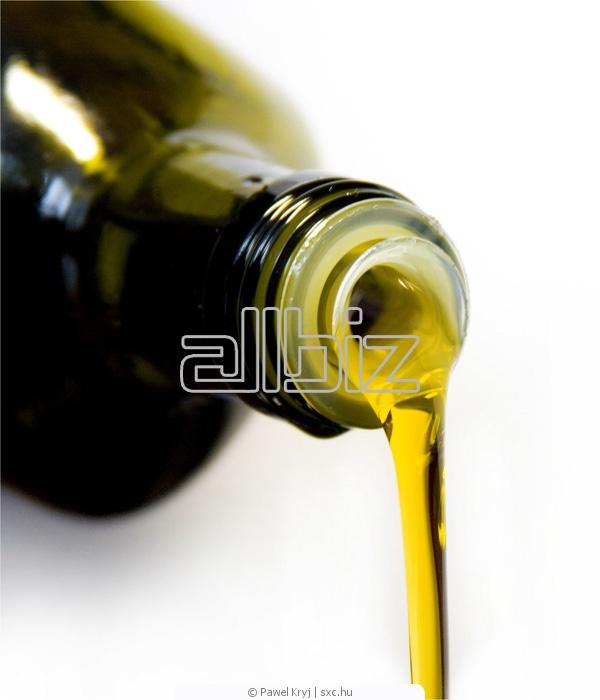 Kupić Olej rzepakowy, olej tłoczony z rzepaku