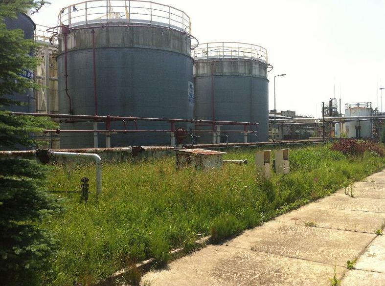 Kupić Estry kwasów tłuszczowych - biokomponent w oleju opałowym oraz do stosowania jako samodzielne biopaliwo.