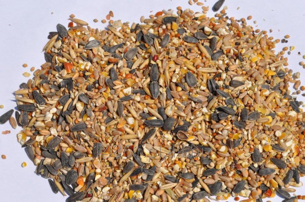 Kupić Kuropatwa -drobna karma dla drobiu ozdobnego 30 kg