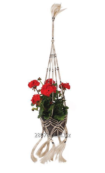 Kupić Makrama na kwiaty