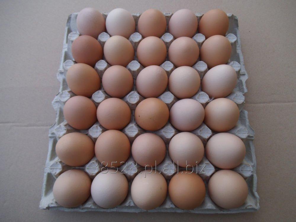 Jajka kl. M pakowane 30 szt