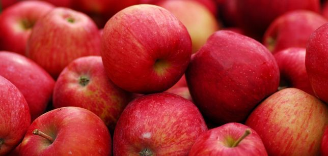 Buy Apples Jonagored / Decosta of Polish, large wholesale quantities of full truck loads !!! available all year !!!