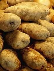 Kupić Ziemniak instantyzowany