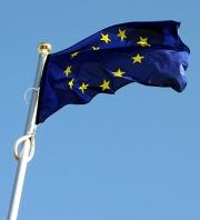 Kupić Flaga w wersji Standard