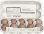 Kupić Jaja z Sokołowa