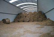Kupić Obiekty rolnicze