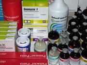 Kupić Szczepionki dla zwierząt