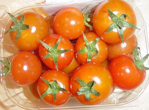Kupić Pomidory średnioowocowe