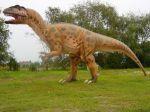Kupić Dinozaury