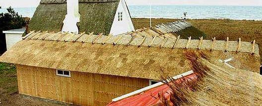 Kupić Dachy ze strzechą