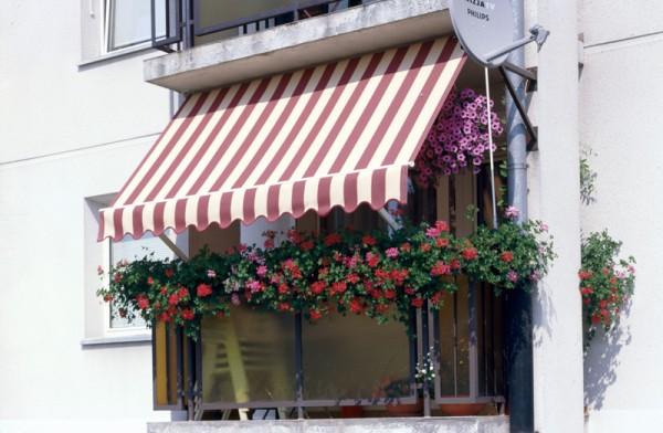 Kupić Markizy balkonowe