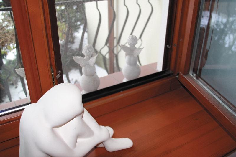Kupić Moskitiery okienne