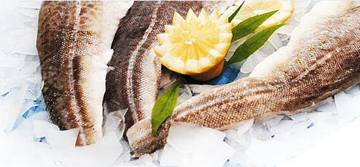 Kupić Filety rybne