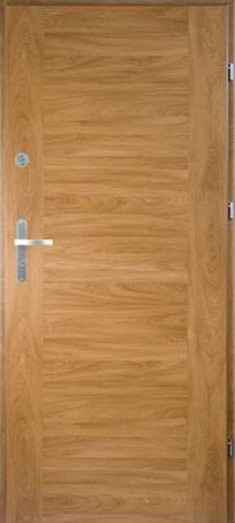 Kupić Drzwi ENTER 00