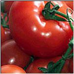Kupić Pomidor cały bez skóry