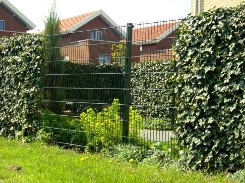 Kupić Ogrodzenia panelowe