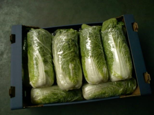 Kupić Warzywa sprzedaż hurtowa