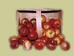 Kupić Różne odmiany jabłek przechowywane przez cały rok