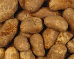 Ziemniaki polskie, smaczne ziemniaki jadalne,