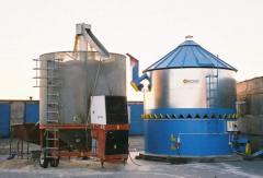 Coolers grain